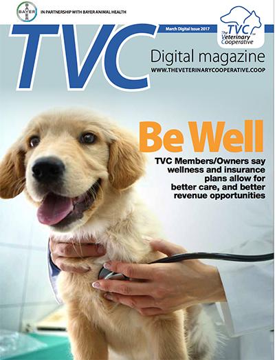 BewWEllMagazine